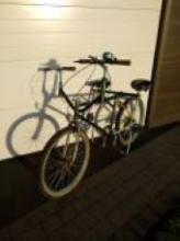 buddy bike